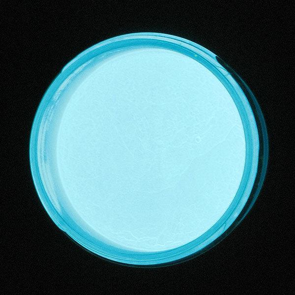 Pigments (Bugtone) Power Glow Azure Neon Cветонакопительный пигмент лазурный неон 100 гр. пл. банка import_files_77_7762fa2c13b511e3b07350465d8a474f_224131fa8f3111e3bf450024bead9dca.jpeg