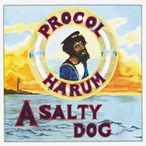 Procol Harum / A Salty Dog (LP)