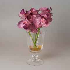 Орхидея в рюмке в геле 60025-20