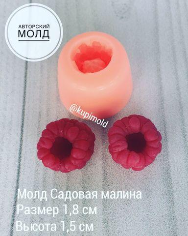 Молд Садовая малина