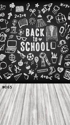 Фотофон виниловый стена-пол «Снова в школу» №065