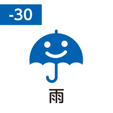 Pilot FriXion Stamp SPF-12-30L (雨 / ame / дождь)