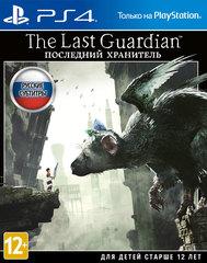 Sony PS4 The Last Guardian (Последний хранитель) (русские субтитры)