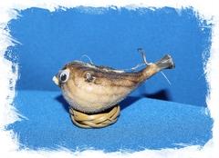 Рыба Попугай 6 см