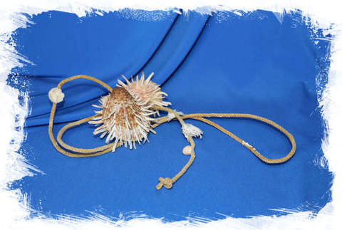 Друза из Спондилусов на верёвке