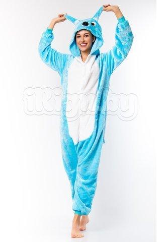 Коала голубая