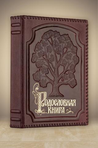 Родословная книга Изысканная в оплетке (кожа)