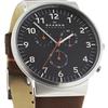 Купить Наручные часы Skagen SKW6099 по доступной цене