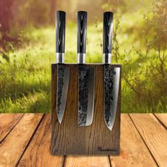 Набор из 5 ножей Samura Blacksmith c подставкой Woodinhome