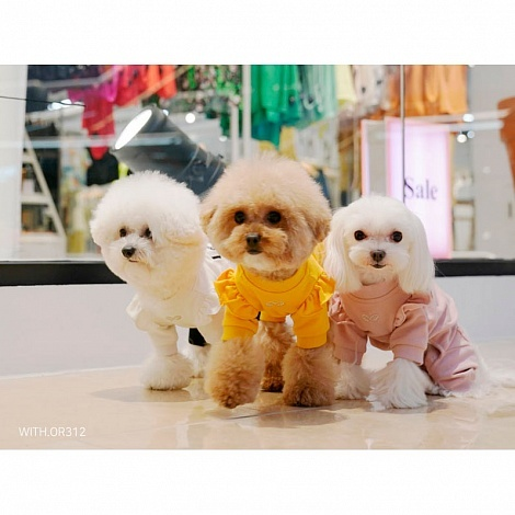 купить костюмы для собак