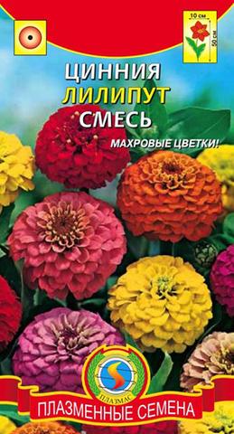 Семена Цветы Цинния Лилипут смесь