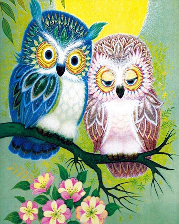 Картина раскраска по номерам 30x40 Две совы на ветке ...