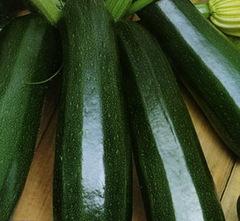 Тосха семена кабачка, (Clause / Клос)