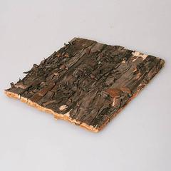 Березовый лист 10*10 см