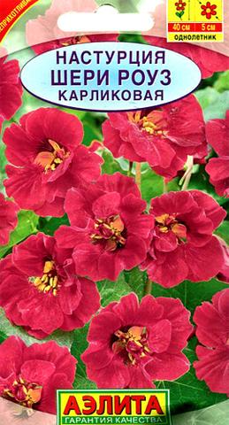 Семена Цветы Настурция Шери Роуз