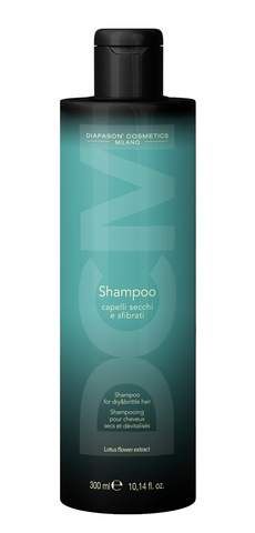 Шампунь Диапазон ДСМ восстанавливающий для сухих волос 300 мл