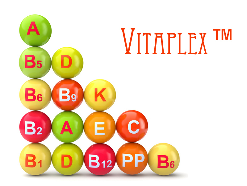 Vitaplex™ (Витаплекс), 10 г