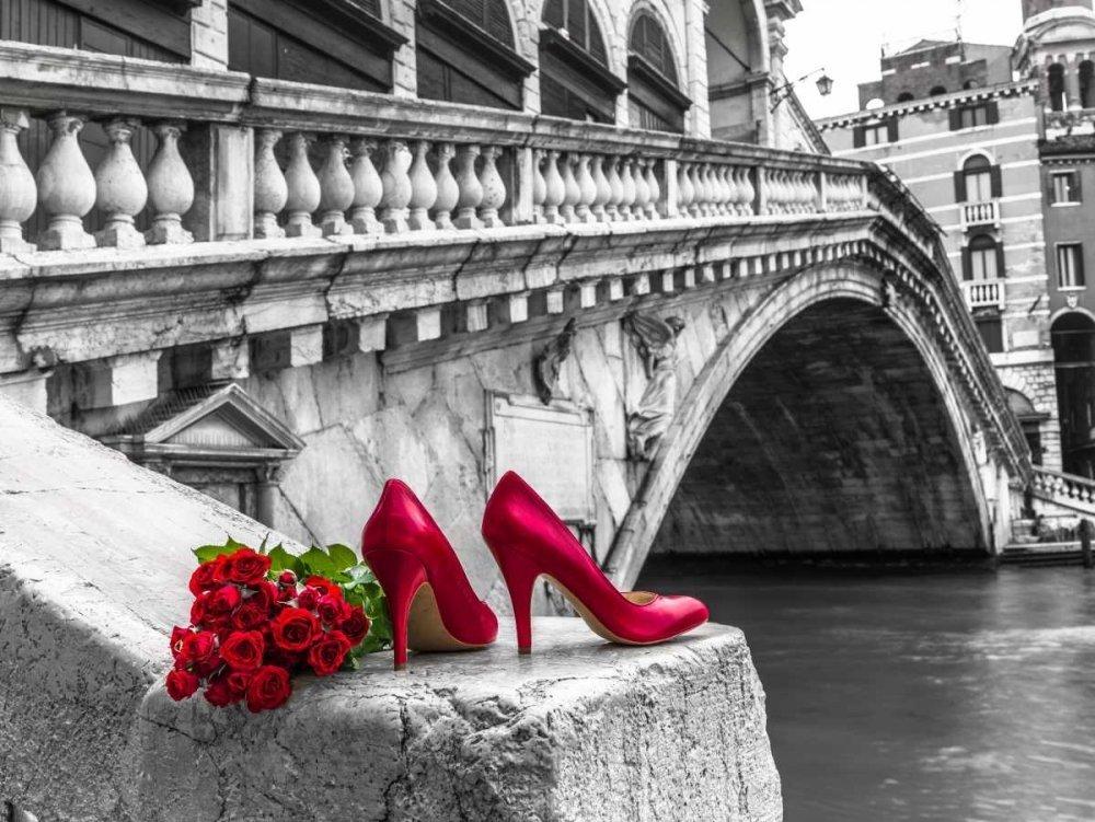 Картина раскраска по номерам 30x40 Красные туфли и цветы ...
