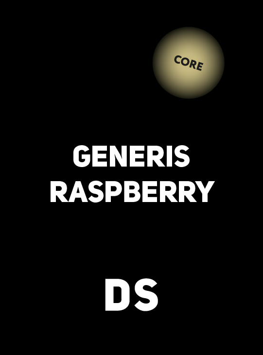 Аксессуар DS CORE GENERIS RASPBERRY 100