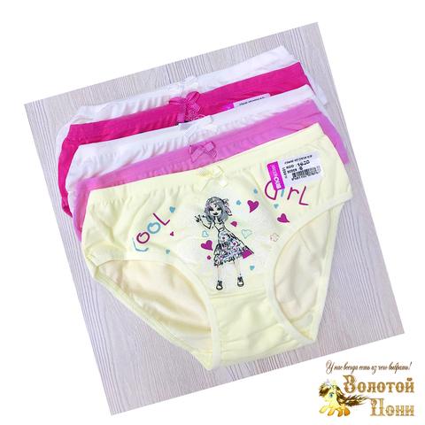 Трусики для девочки (6-16) 191103-TR-BK1630