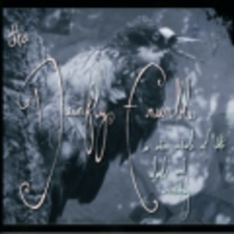 DEADFLY ENSEMBLE, THE (Cinema Strange project)   AN ENTIRE WARDROBE OF DOUBT AND UNCERTAINTY +1 bonus track  2008