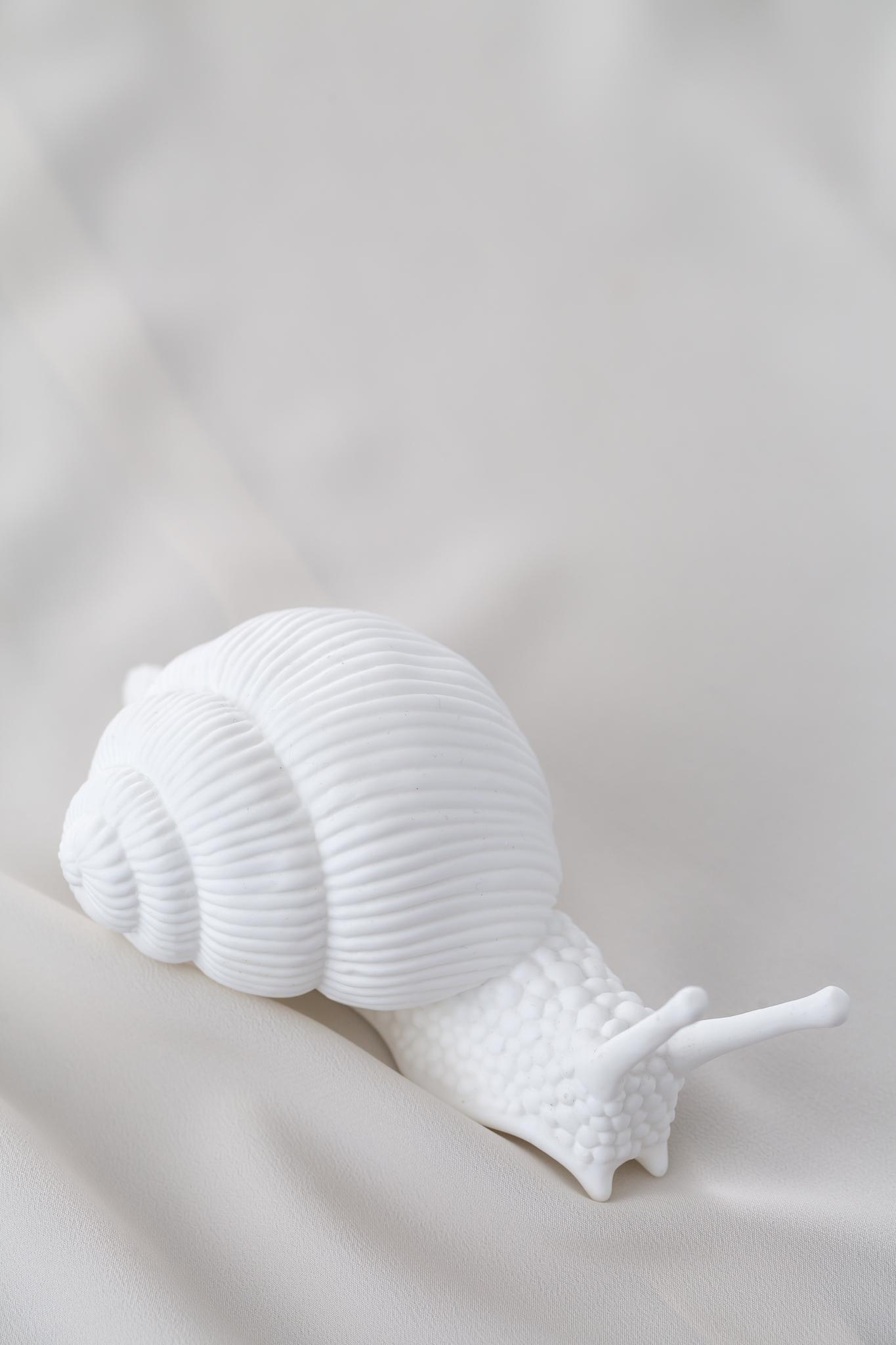 Улитка WHITE SNAIL