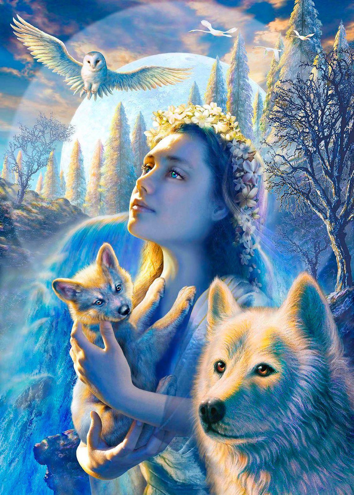 Картина раскраска по номерам 30x40 Девушка с волченком и ...
