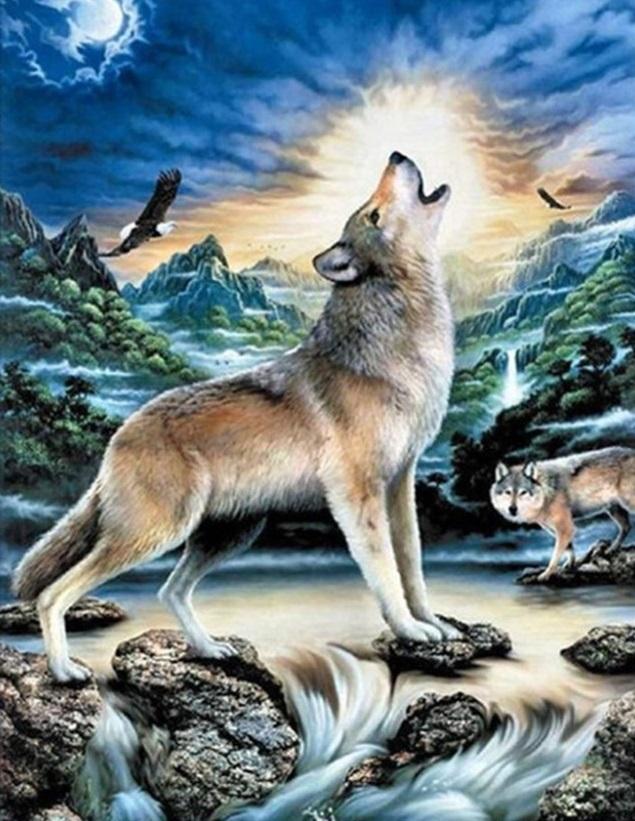 Картина раскраска по номерам 30x40 Ночной животный мир ...
