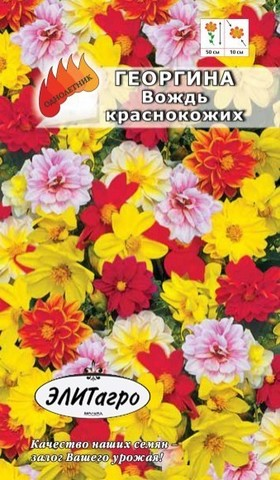 Семена Цветы Георгина Вождь краснокожих смесь
