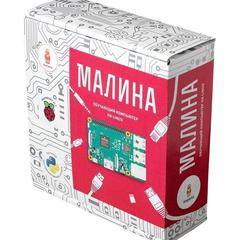 Электронный конструктор Малина