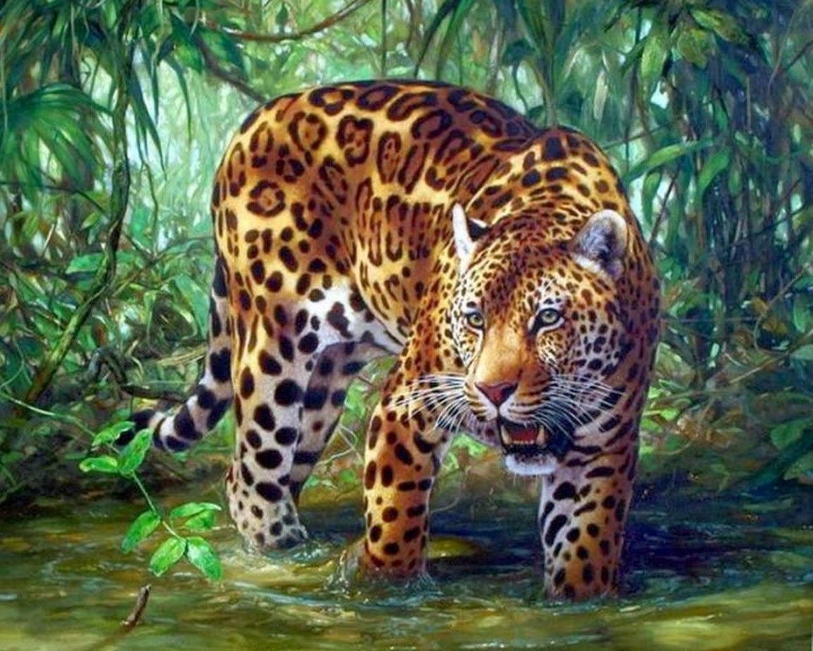Картина раскраска по номерам 30x40 Тигрица в воде– купить ...