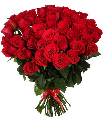 Букет из 51 красной розы (80 см)