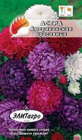 Семена Цветы Астра Американская красавица смесь