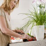 Чашка кухонная - большая, артикул 460265, производитель - Brabantia, фото 2