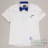 Рубашка (галстук-бабочка)