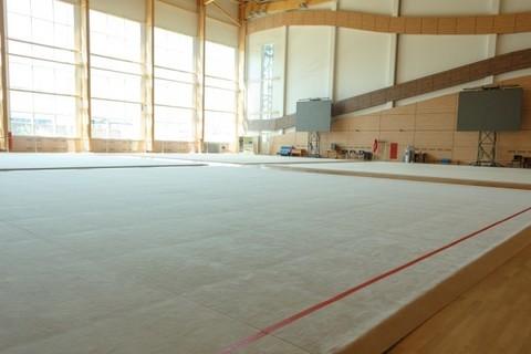 Ковер для художественной гимнастики (тренировочный) 14х14х0,02м.