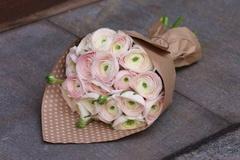 Букет из ранункулюсов 19 шт. нежно-розовых ПРЕМИУМ