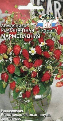 Семена Земляника Мармеладная
