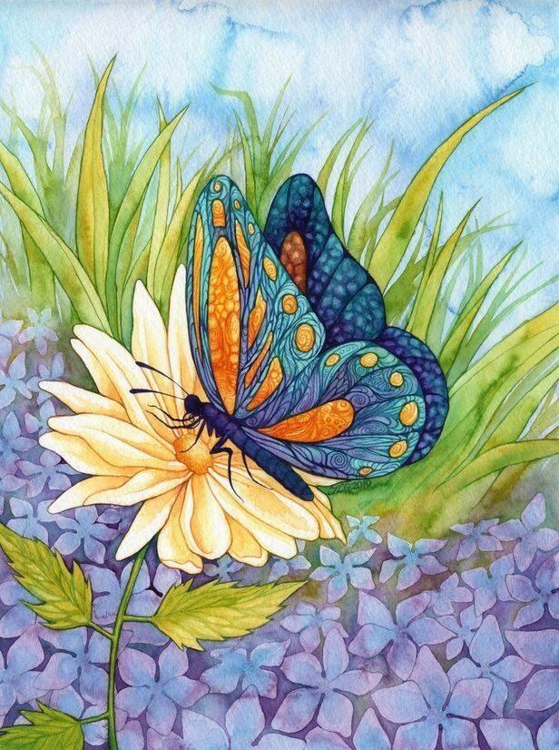 Картина раскраска по номерам 30x40 Бабочка на цветке ...