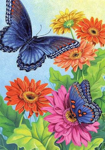 Картина раскраска по номерам 30x40 Бабочки на разноцветных ...