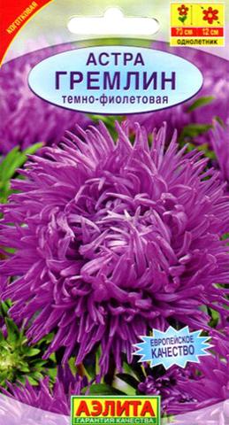 Семена Цветы Астра Гремлин тёмно-фиолетовая
