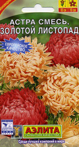 Семена Цветы Астра Золотой листопад