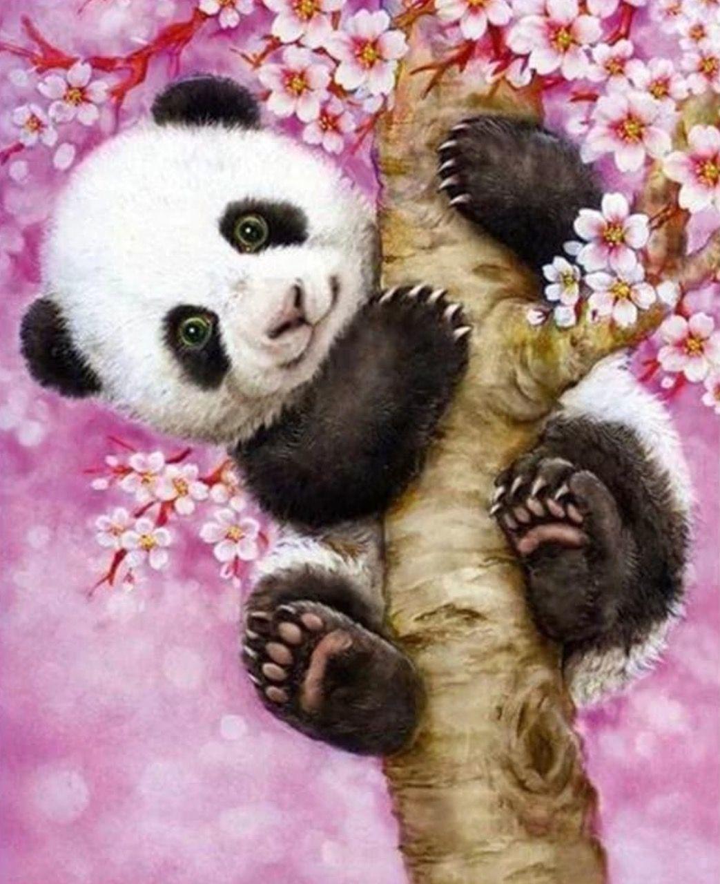 Картина раскраска по номерам 30x40 Панда на цветущем ...