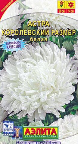 Семена Цветы Астра Королевский размер белая