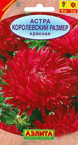 Семена Цветы Астра Королевский размер красная