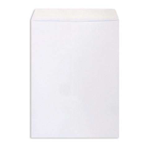 Пакет Белый E4стрип Businesspack 300х400 100г 500шт/уп/5181