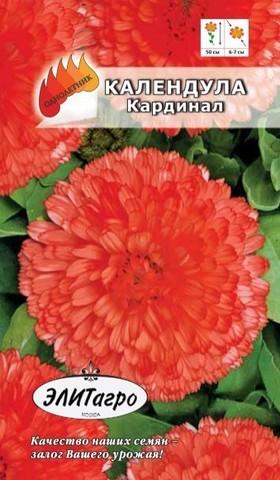Семена Цветы Календула Кардинал