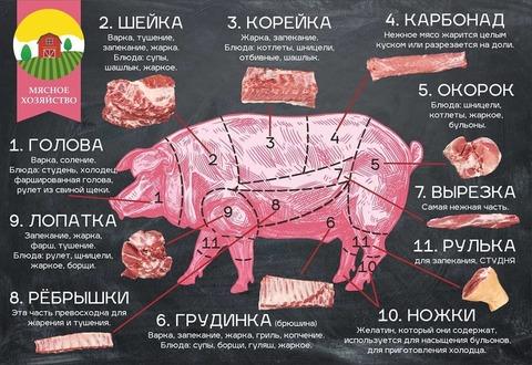Макет плаката по разделке мяса свиньи для Мясного хозяйства