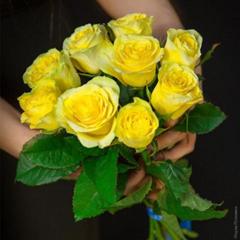 Букет 9 желтых роз Penny Lane