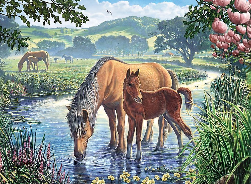Картина раскраска по номерам 30x40 Лошади на водопое ...